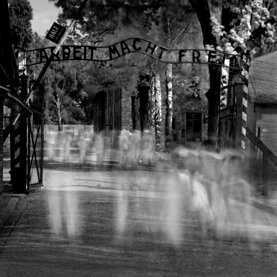 2008-5-10 Auschwitz No 11 - Final 2-1-2009 750